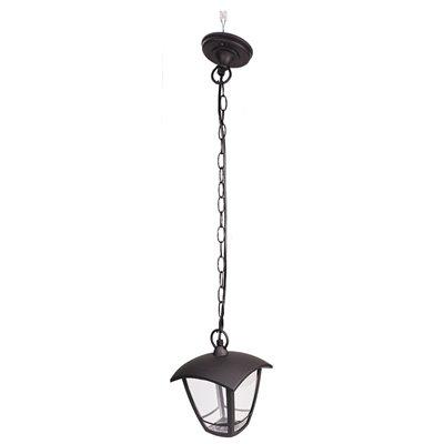 Lampa ogrodowa wisząca SZOT-825 zewnętrzna